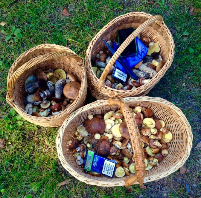 baskets set aside for lunch